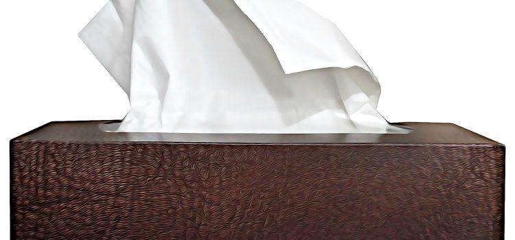 Les boîtes à mouchoirs: l'accessoire incontournable