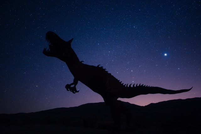 chambre décoration dinosaure