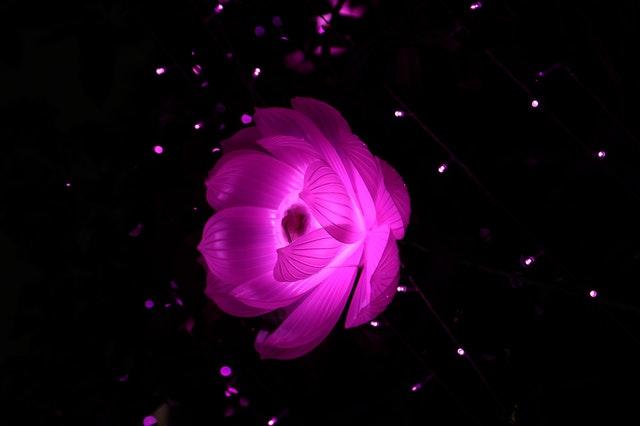 utiliser les fleurs artificielles
